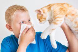 Бронхиална астма при деца - симптоми и лечение
